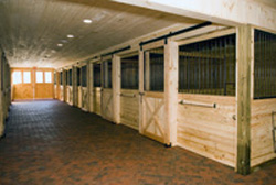 Indoor Stalls at a Horse Farm