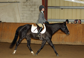 Riding Lessons for Individuals