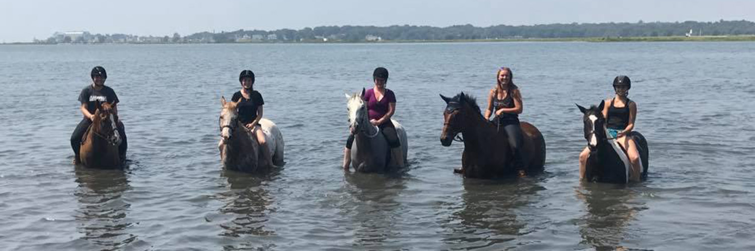 Several Women Riding Horses in the Ocean